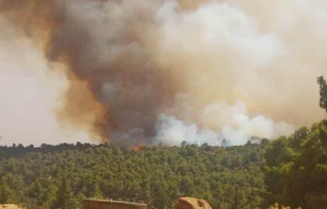 حريق بغابة تيارت
